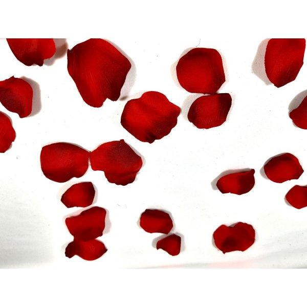 Pétales de rose tissu cloris rouge flammé